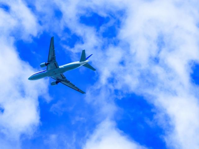 マイルを使って海外留学・海外旅行